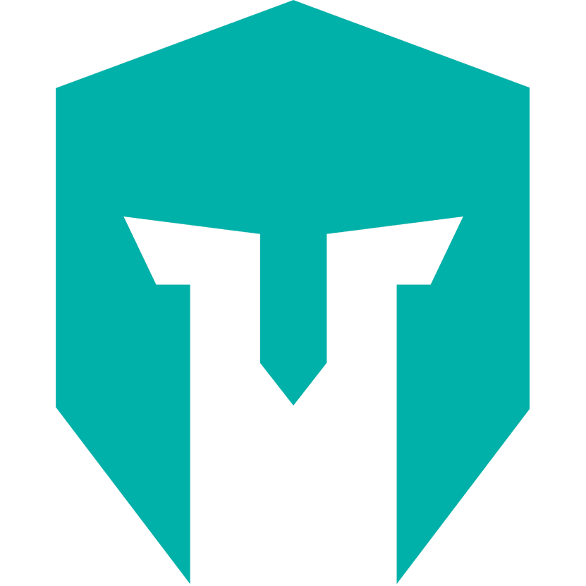 IMT team logo